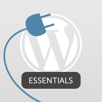 3.5 Hours of WordPress Plugin Development Training