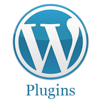 The 13 Most Essential Plugins for WordPress